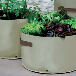 Small Image of Haxnicks Vegetable Patio Planter - Pack of 3