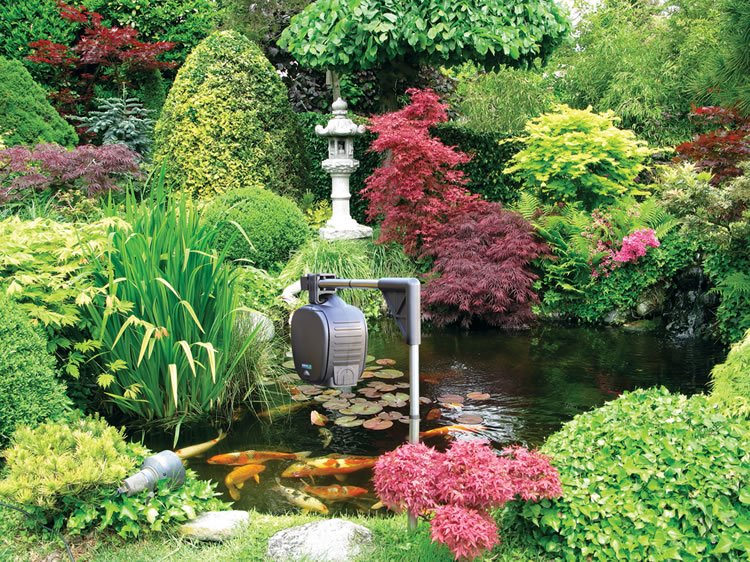 Hozelock Automatic Fish Food Feeder 163 63 37 Garden4less