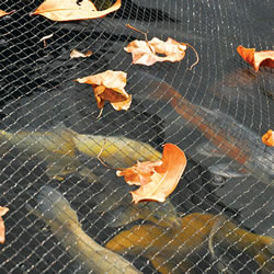 Small Image of Hozelock Pond Netting 6m x 4m - 1736