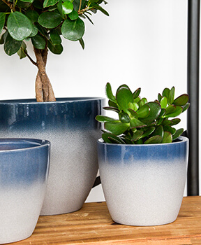 Image of Ivyline Turno 17cm Indoor Plant Pot in Ocean