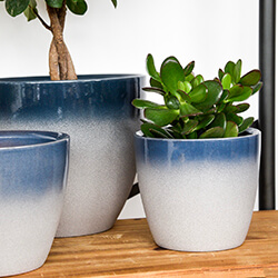 Small Image of Ivyline Turno 17cm Indoor Plant Pot in Ocean