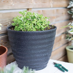 Small Image of Kelkay Plant Avenue Stone Collection Large Hudson Pot in Black