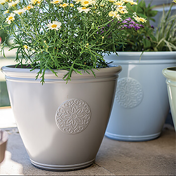 Image of Kelkay Plant Avenue Trad. Collection Small Eden Emblem Pot in Grey