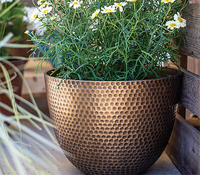 Image of Kelkay Plant Avenue Urban Collection Large Elements Pot in Gold