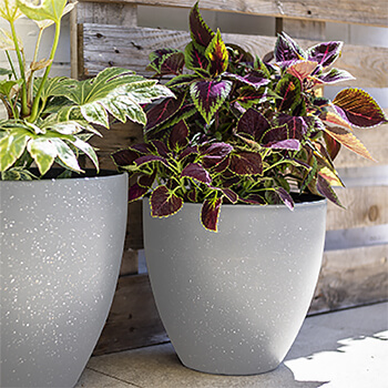 Image of Kelkay Plant Avenue Stone Collection Lg Terrazzo Egg Pot in Grey