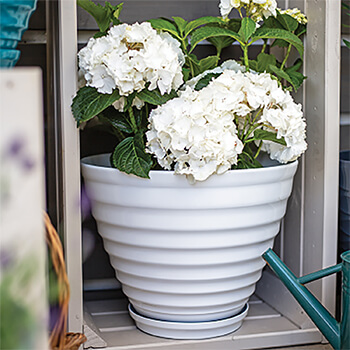 Image of Kelkay Plant Avenue Vale Pot with Built in Saucer in White