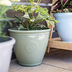 Small Image of Kelkay Plant Avenue Trad. Collection Large Eden Emblem Pot in Green