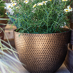 Small Image of Kelkay Plant Avenue Urban Collection Large Elements Pot in Gold