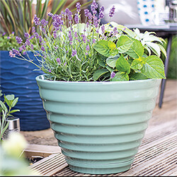 Small Image of Kelkay Plant Avenue Vale Pot with Built in Saucer in Sage Green