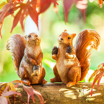 Extra image of Walnut & Hazel the Red Squirrel Garden Ornament Pair