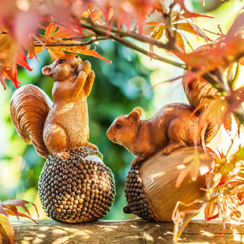 Extra image of Acorn & Conker the Nut-Loving Red Squirrel Garden Ornament Pair