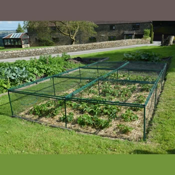 Image of Standard Strawberry Cage 46cm x 244cm x 366cm with Bird Netting