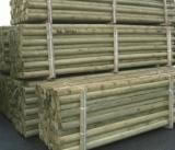 Image of 10 x 1.65 (5,5ft) pressure treated machine round posts - 75mm Diameter