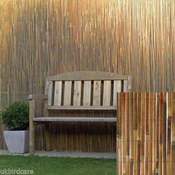 Image of 2m tall x 3m long Split Bamboo Screening