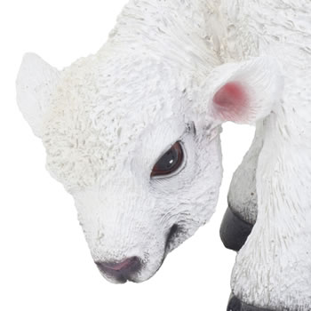 Extra image of Realistic 13cm Grazing White Lamb Sheep Animal Garden Ornament