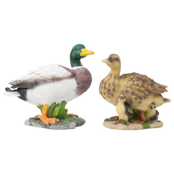 Image of Realistic Life-size Duck Family - Mallard and Duck with Ducklings Garden Ornaments