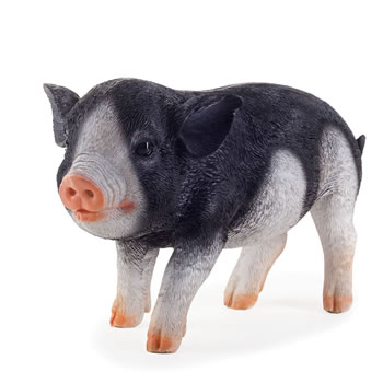 Image of Realistic Black Piglet Resin Garden Ornament