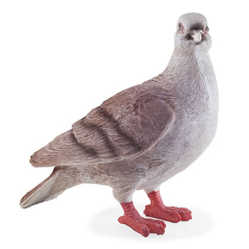 Image of Realistic Life-size Grey Dove Bird Garden Ornament