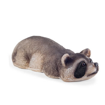Image of Timmy the Realistic Garden Pond Feature Floating Raccoon Animal Ornament