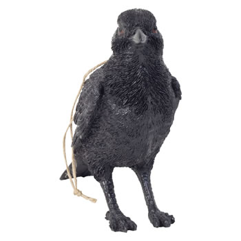Extra image of Realistic Life-size Black Crow Bird Garden Ornament