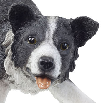 Extra image of Large Realistic Black & White Herding Border Collie Sheepdog Statue