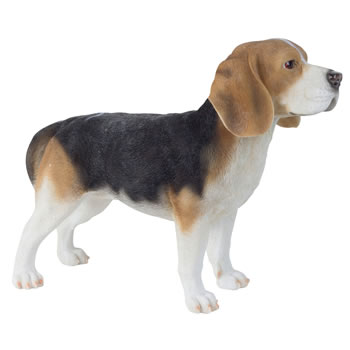 Extra image of Large 39cm Realistic Standing Beagle Dog Polyresin Garden Ornament