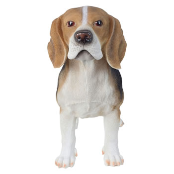 Image of Large 39cm Realistic Standing Beagle Dog Polyresin Garden Ornament