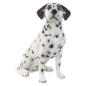 Image of Large Realistic 50cm Sitting Dalmatian Dog Statue Garden Ornament