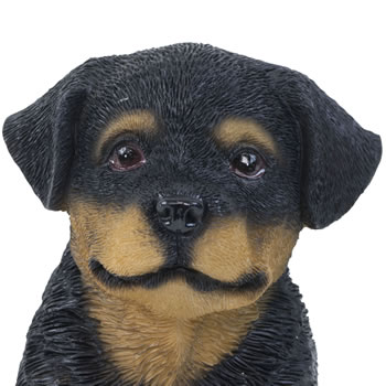 Extra image of Realistic 15cm Sitting Rottweiler Puppy Dog Statue Ornament