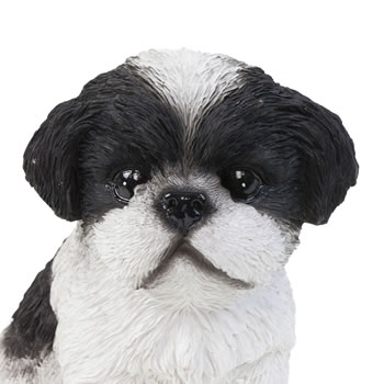 Extra image of Realistic 16cm Sitting Black Shih Tzu Puppy Dog Statue Ornament