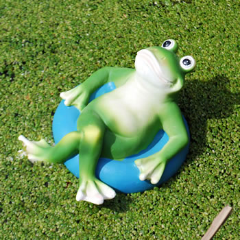 Extra image of Floating Frog on Blue Rubber Ring Resin Pond Feature