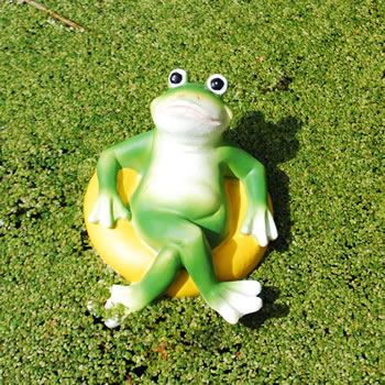 Extra image of Floating Frog on Yellow Rubber Ring Resin Pond Feature