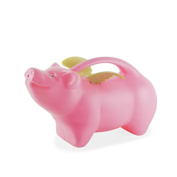 Image of Snooty' the Novelty Flying Pig 1.8L Garden Watering Can