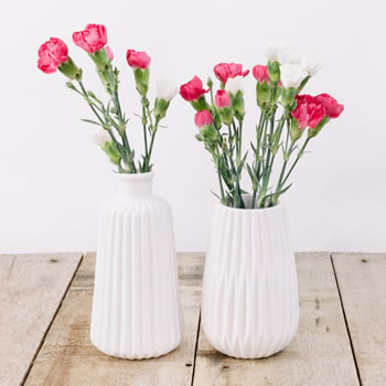 Extra image of 'Esko' White Geometric Porcelain Contemporary Vase Duo for the Home