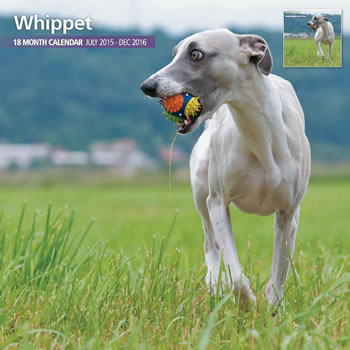 Image of Whippets - 2016 18 Month Traditional Calendar