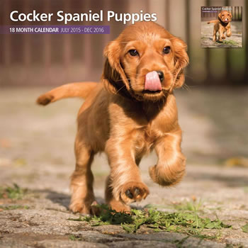 Image of Cocker Spaniel Puppies - 2016 18 Month Traditional Calendar