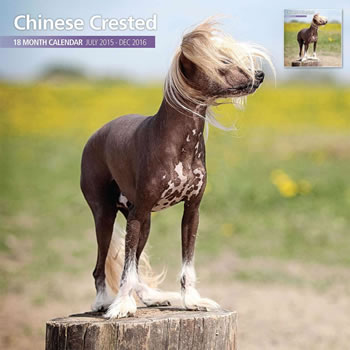 Image of Chinese Crested - 2016 18 Month Traditional Calendar