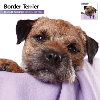 Image of Border Terrier - 2016 18 Month Calendar