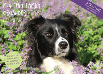 Image of Border Collie 12 Month 2016 A4 Planner