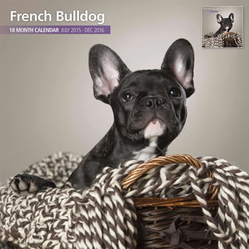 Image of French Bulldog - 2016 18 Month Traditional Calendar