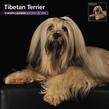 Image of Tibetan Terrier - 2016 18 Month Traditional Calendar