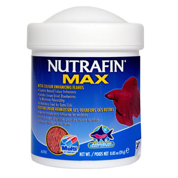 Image of Nutrafin Max Betta Color Enhancing Flakes 24g