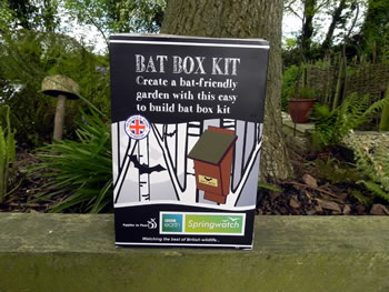 Image of Apples to Pears Springwatch Bat Box Kit Gift