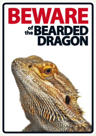 Image of Beware Of The Bearded Dragon