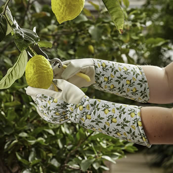 Image of Briers Ladies Sicilian Lemon Gauntlet Gloves