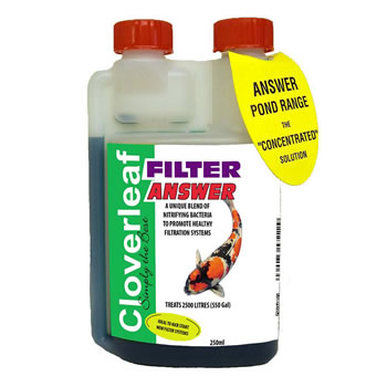 Image of Cloverleaf Filter Answer 250ml
