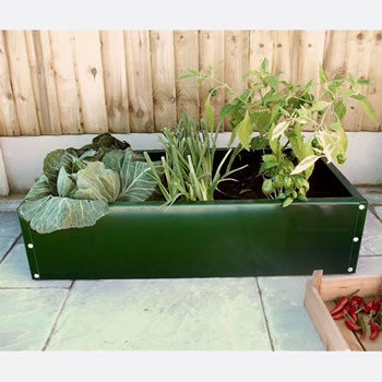 Image of (Pack of 2) Everlasting White Raised Beds 100cm long x 100cm wide