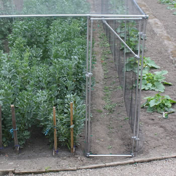 Image of Heavy Duty Fruit Cage Door