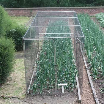 Image of Standard Fruit Cage 183cm high x 366cm wide x 914cm long