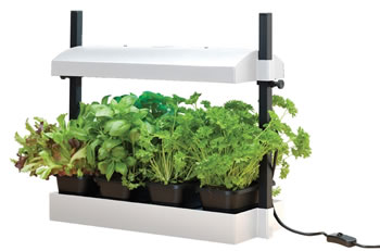 Image of Garland Micro Grow Light Garden Propagator